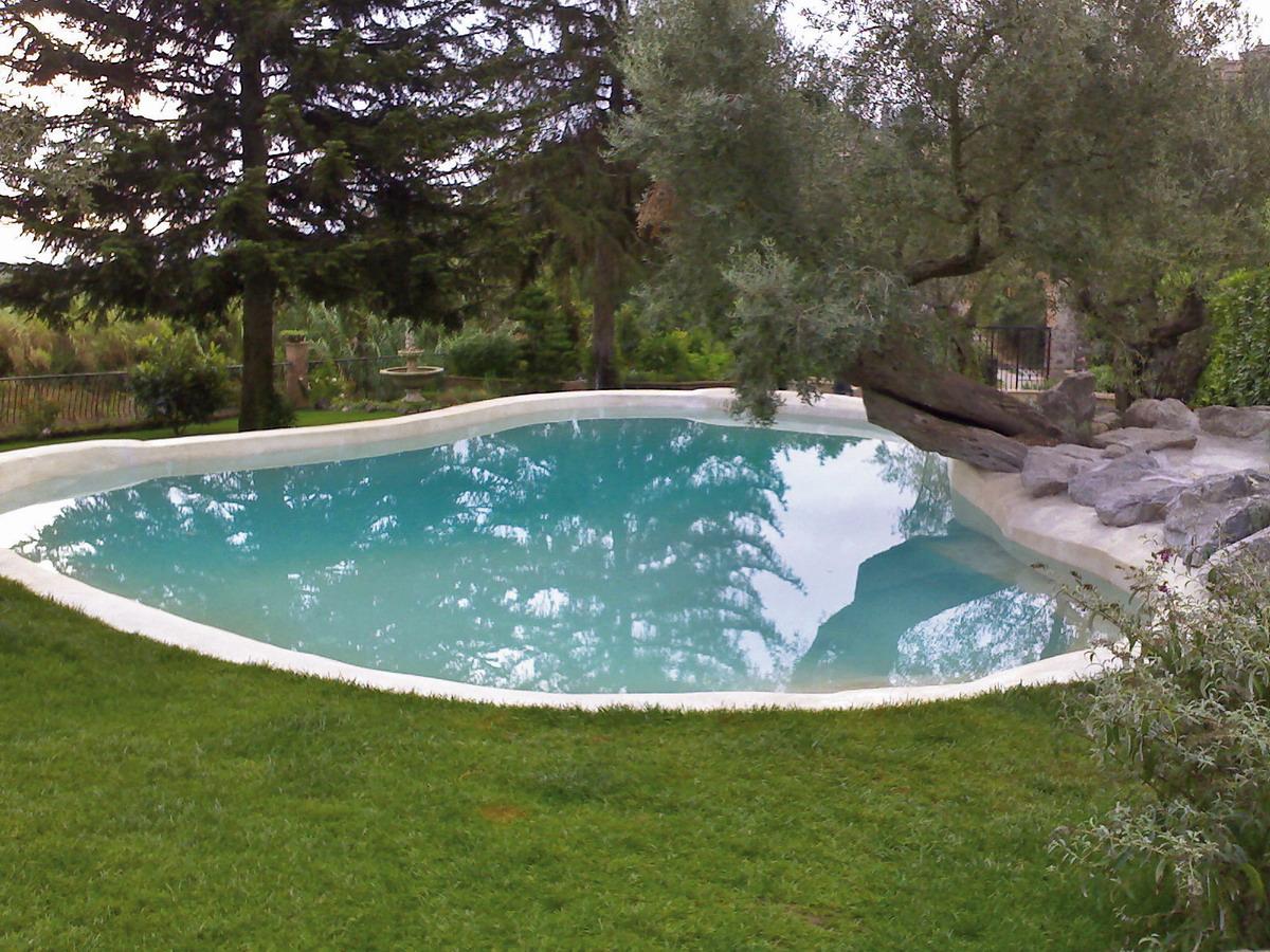 Benza realizzazione di piscine prefabbricate bio for Sistema di filtraggio per laghetto