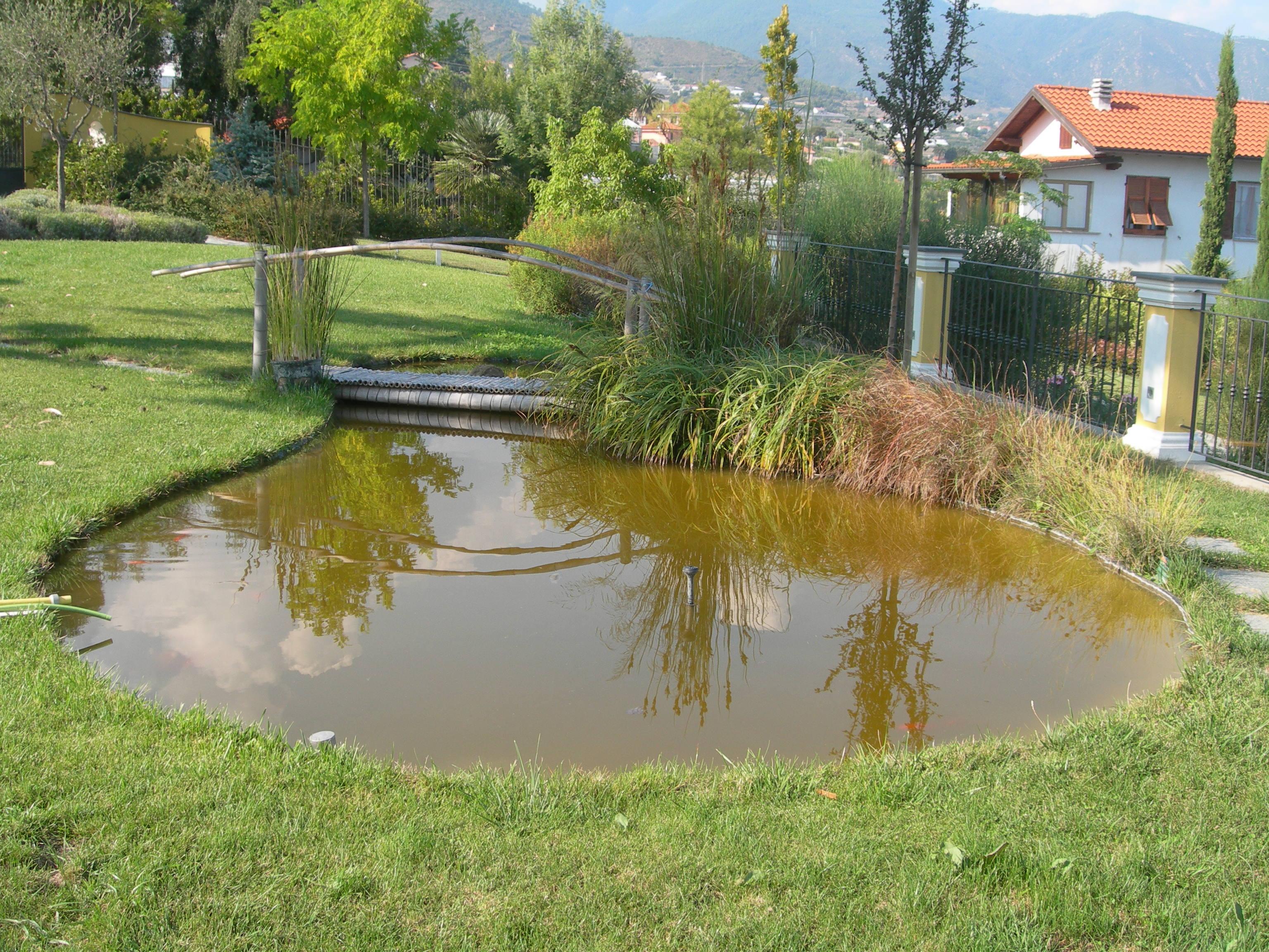 Benza laghetti da giardino cascate e ruscelli artificiali for Laghetto in giardino pesci