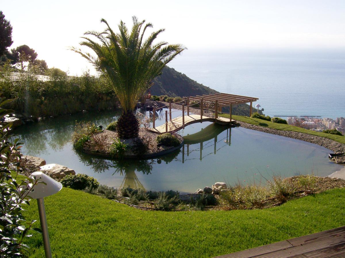 Benza laghetti da giardino cascate e ruscelli artificiali for Cascate per laghetti da giardino