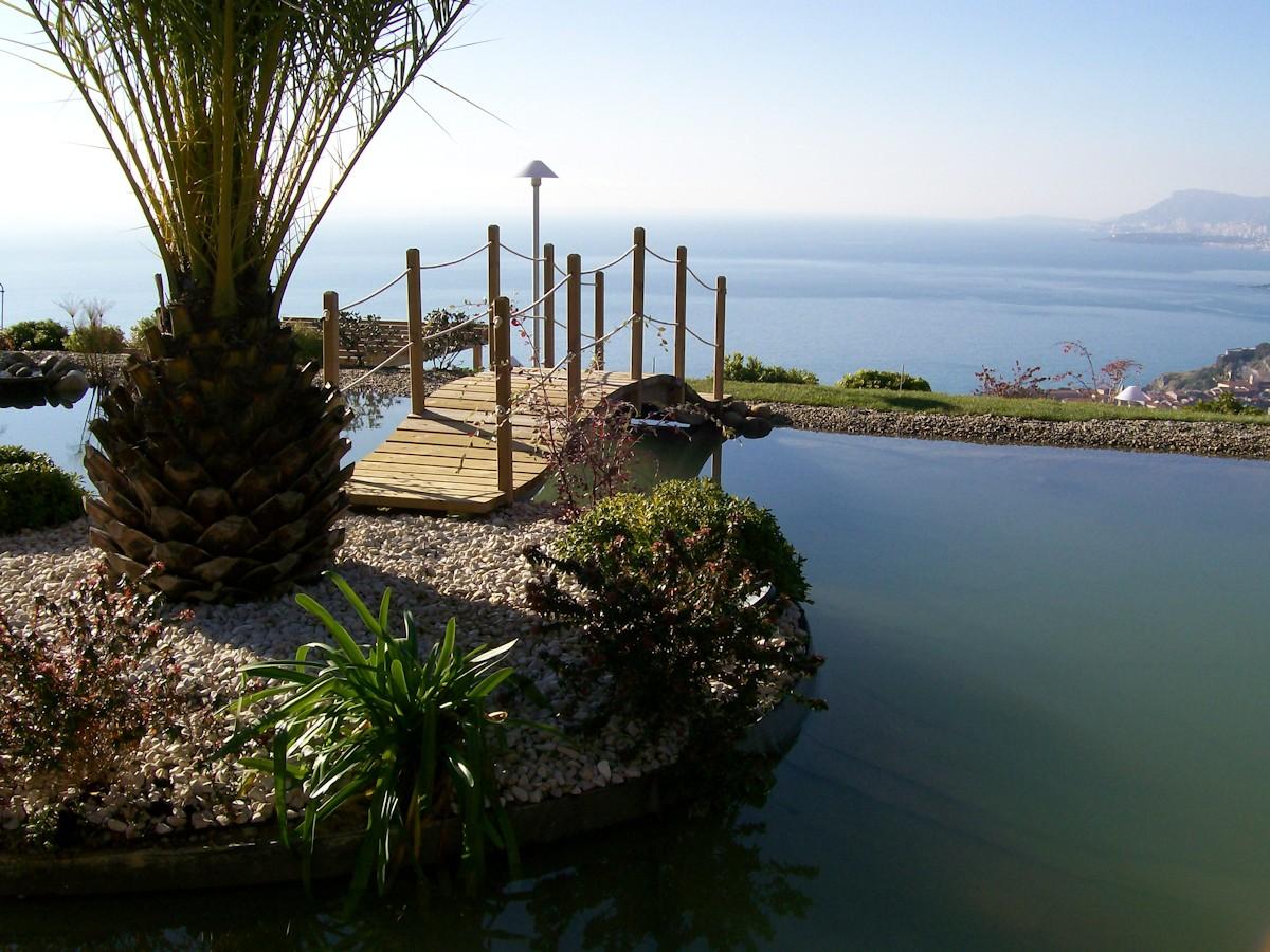 Benza laghetti da giardino cascate e ruscelli artificiali for Laghetti ornamentali da giardino