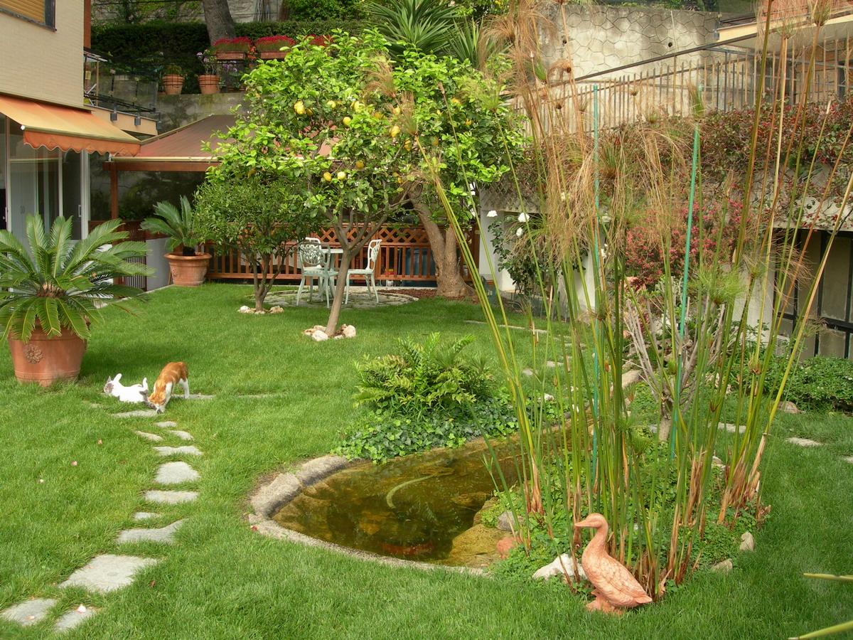 Benza laghetti da giardino cascate e ruscelli artificiali - Piccoli laghetti da giardino ...