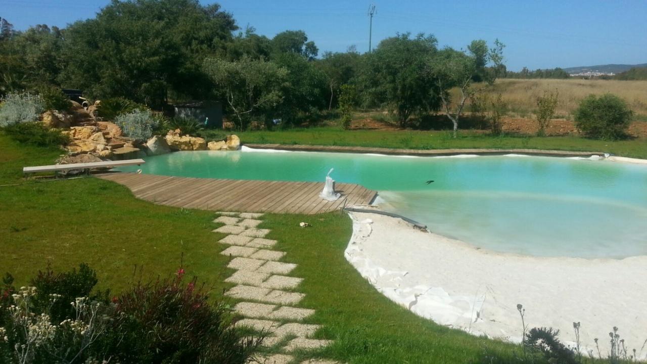Telo Per Laghetto Da Giardino benza: laghetti da giardino, cascate e ruscelli artificiali