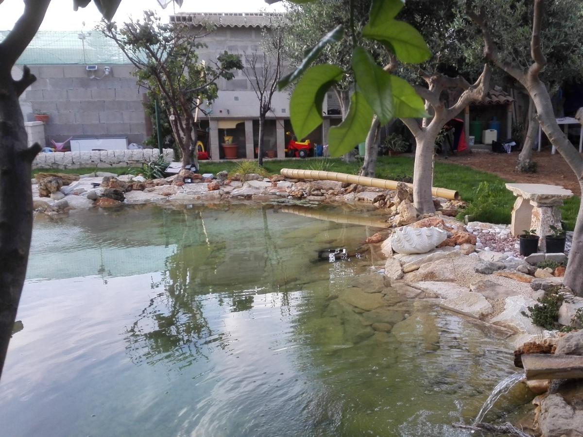 Cascata per giardini con come fare un giardino da zero for Cascate laghetti da giardino